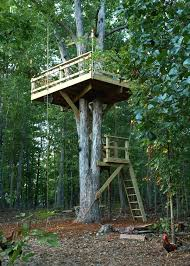 Tree House Backyard by Tree Fort Ideas Ideas For The Boys Pinterest Forts