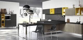 German Kitchen Cabinets Manufacturers Modular Kitchen Manufacturer In Delhi Noida U0026 Gurgaon Modular