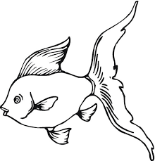 fish 10 free printable fish coloring pages