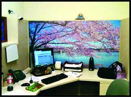 cork and wallpaper clean 2jpgoffice cubicle holiday decorating