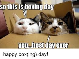 Boxing Day Meme - so thisis boxing day yep best day ever happy boxing day boxing