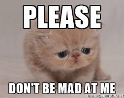 Dont Get Mad Meme - don t be mad cat pictures to pin on pinterest thepinsta