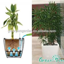 Self Watering Planters by Plastic Flower Pot Greensun Planter Pots Self Watering Planters