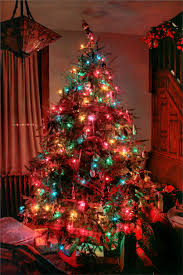 tree with colored lights decor