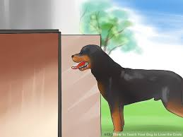 How to Teach Your Dog to Love the Crate with wikiHow