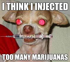 Injecting Marijuanas Meme - marijuana