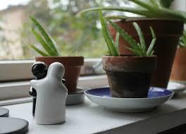Houseplants Best Indoor Plants 7 Picks For Every Room Bob Vila