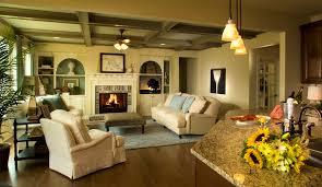 formal living room design ideas fascinating living room color