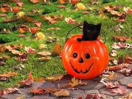 cat halloween background images 70 beautiful halloween wallpapers for desktop