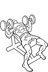 Incline Dumbell Bench Press File Dumbbell Incline Bench Press 2 Png Wikimedia Commons