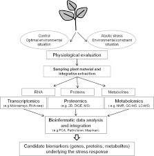 abiotic stress responses in plants unraveling the complexity of