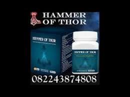 jual obat hammer of thor asli di denpasar bali 082243874808 youtube