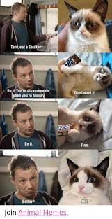 Eat A Snickers Meme - 25 best memes about eat a snickers eat a snickers memes