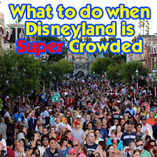 what to do when disneyland is crowded disneyland daily