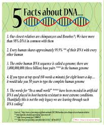 friday five fantastic facts about dna and how to extract dna