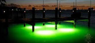 underwater led dock lights green monster fishing lights 75 cord bh usa