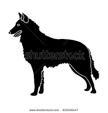 belgian shepherd silhouette dark belgian wolf single icon flat stock vector 619579013