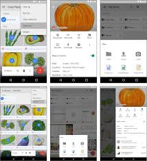 8 best cloud apps for android online photo backup and storage