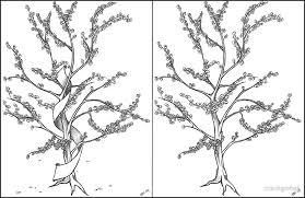 apple tree by crackgerbal redbubble