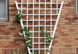 pergola trellis wall sensational trellis wall art pottery barn