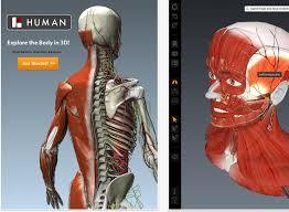 Google Body Anatomy Google 3d Human Body Google Body Browser1 Human Anatomy Charts