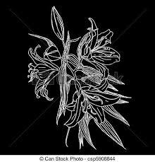 imagenes blancas en fondo negro flores blancas fondo negro vector eps buscar imágenes de galería
