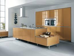 cuisine couleur miel bien choisir la couleur de sa cuisine inspiration cuisine le