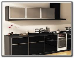 Metal Cabinet Door Inserts Kitchen Cabinet Doors With Frosted Glass Inserts Home Design Ideas