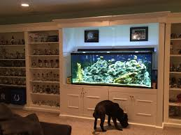 basement sports shelf unit with fish tank in the middle basement