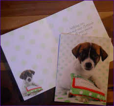 leanin tree boxed cards home design ideas