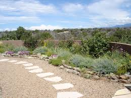triyae com u003d xeriscaping backyard landscaping ideas various