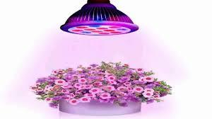 Indoor Plant Light by Bonlux Medium Base E26 E27 Led Plant Grow Light Full Spectrum Led