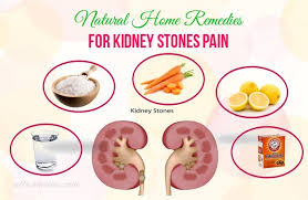 43 natural home remedies for kidney stones pain