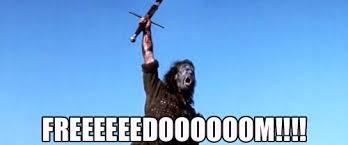 Braveheart Freedom Meme - amy lee on twitter lsoliguetti meaning i am free from my record