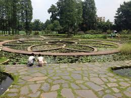 Ucr Botanical Gardens Ucr Botanical Gardens Hours Best Idea Garden