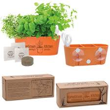 think green5656 wall sprouts indoor garden blossom kit