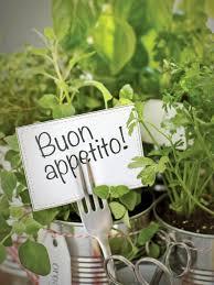 countertops small kitchen herb garden garden ideas wonderful