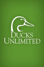 17 best ideas about duck 17 best ideas about ducks unlimited 2017 on pinterest shadow