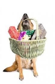 dog gift baskets gallery of dog birthday gift baskets