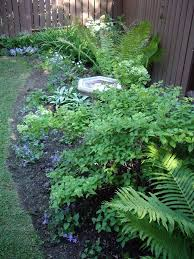 Shady Backyard Ideas 78 Best Shade Gardens Images On Pinterest Shade Garden Hosta