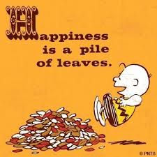 happiness is a pile of leaves quote autumn leaves