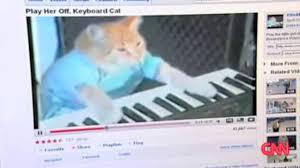 Meme Keyboard - know your meme keyboard cat youtube