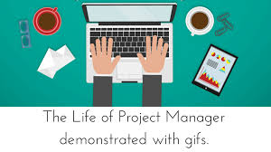 Project Management Meme - the daily life of a project manager demonstrated in gifs levelten