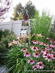 Hummingbird Garden Decor 25 Beautiful Hummingbird Garden Ideas On Pinterest Hummingbird