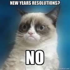 Happy New Year Cat Meme - grumpy cat new years meme 28 images happy new year memes 2017