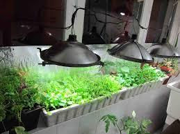 diy how to make a 15 indoor greenhouse urban organic gardener
