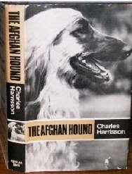 afghan hound racing uk afghan hound times ephemera afghan hound breed books