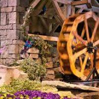 boston flower show promo code flowers ideas for review