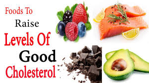 hdl cholesterol high foods foods to raise levels of good