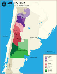 Regions Of South America Map by Wine Map Of Patagonia Recherche Google Wine Maps Pinterest